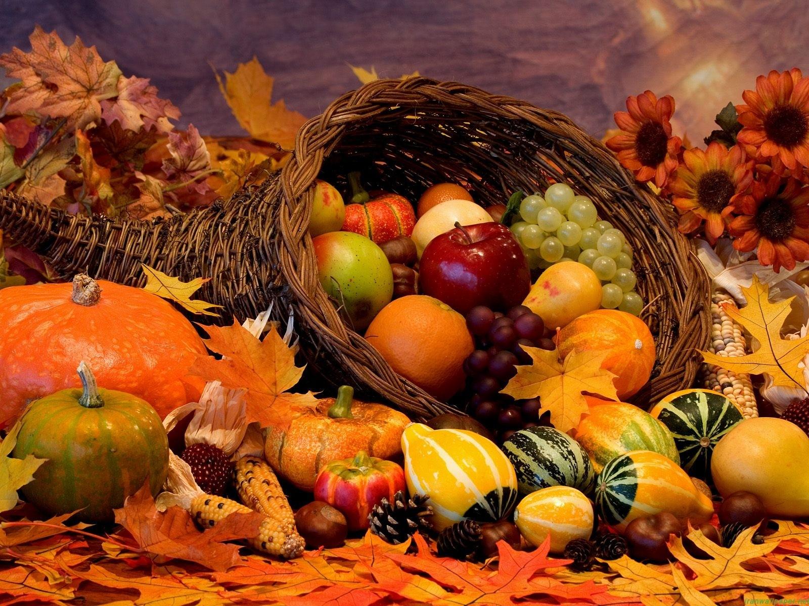 thanksgiving-day-horn-of-plenty