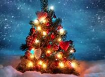 今年のクリスマスはどう過ごしますか?気になるプレゼント♪