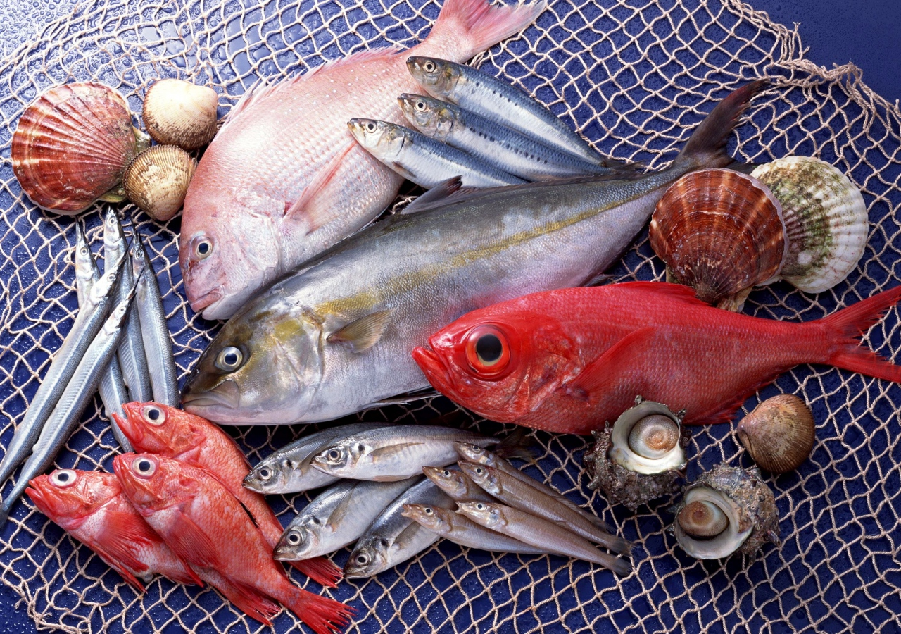 fish_seafood_variety_70893_1280x900