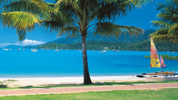 beach_tropics_sea_sand_palm_trees_yachts_84735_602x339