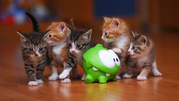 om_nom_kittens_toy_98532_602x339
