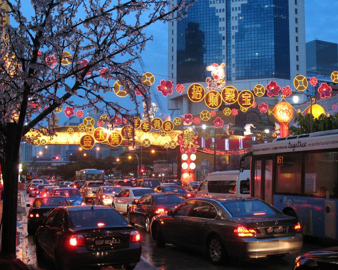 singapore_holiday_chinatown_cork_city_new_year_62007_1280x1024