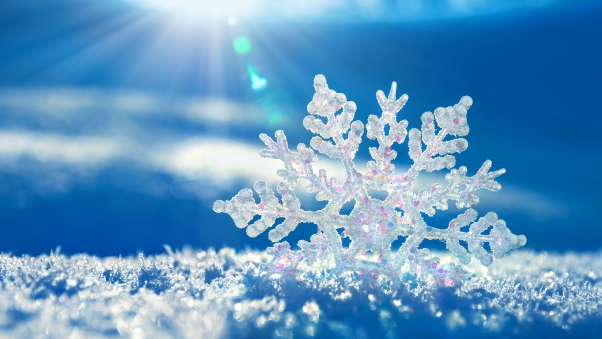 snow_snowflake_winter_73812_602x339