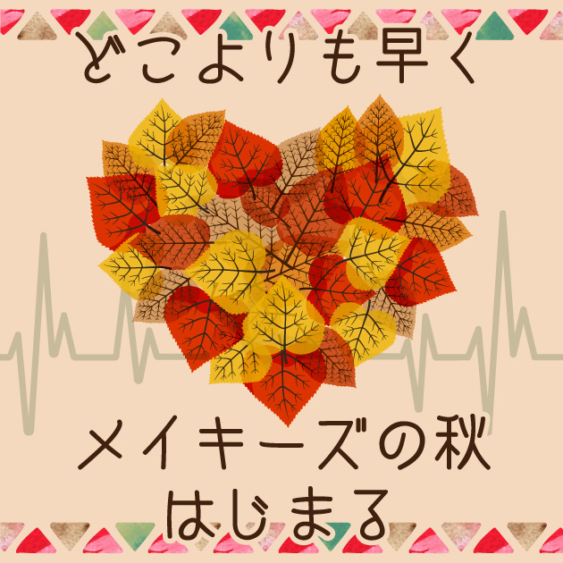 grid_banner_autumn