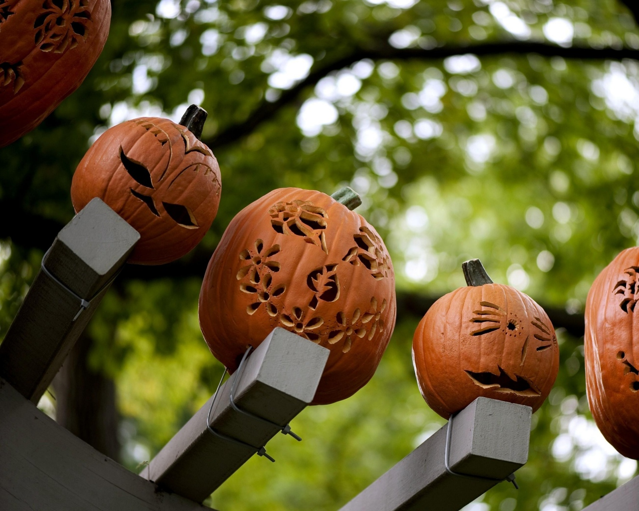 Happy Halloween!ジャック・オー・ランタンを作ってみよう!