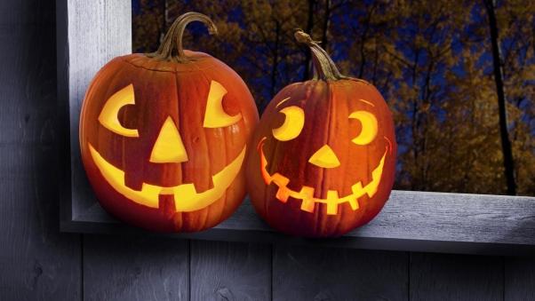 halloween_holiday_pumpkin_steam_box_trees_40972_602x339