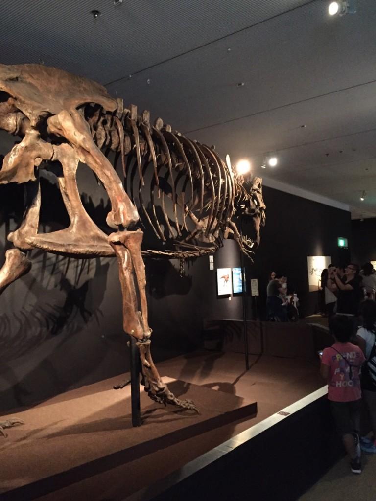 teliranosaurusu