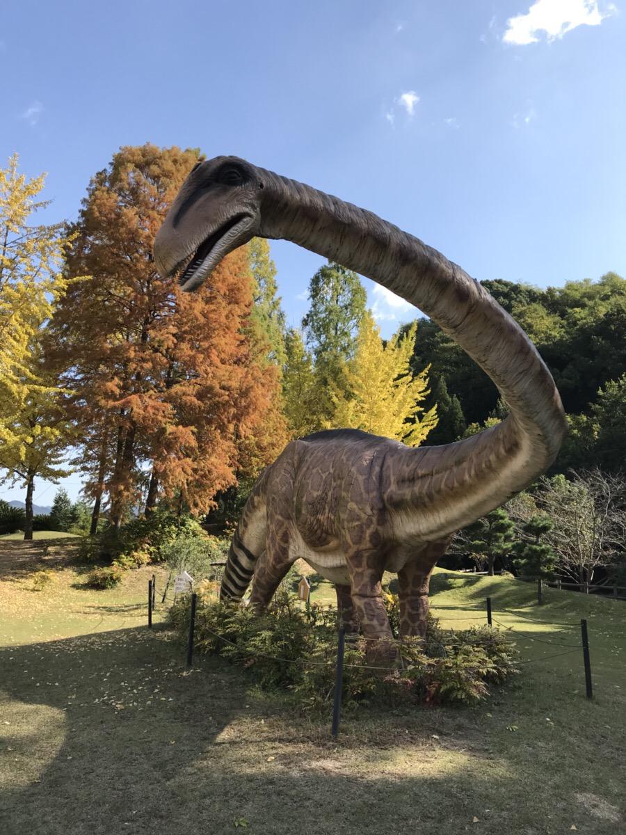 関西から行ける恐竜パーク「カブトガニ博物館」へ潜入レポート
