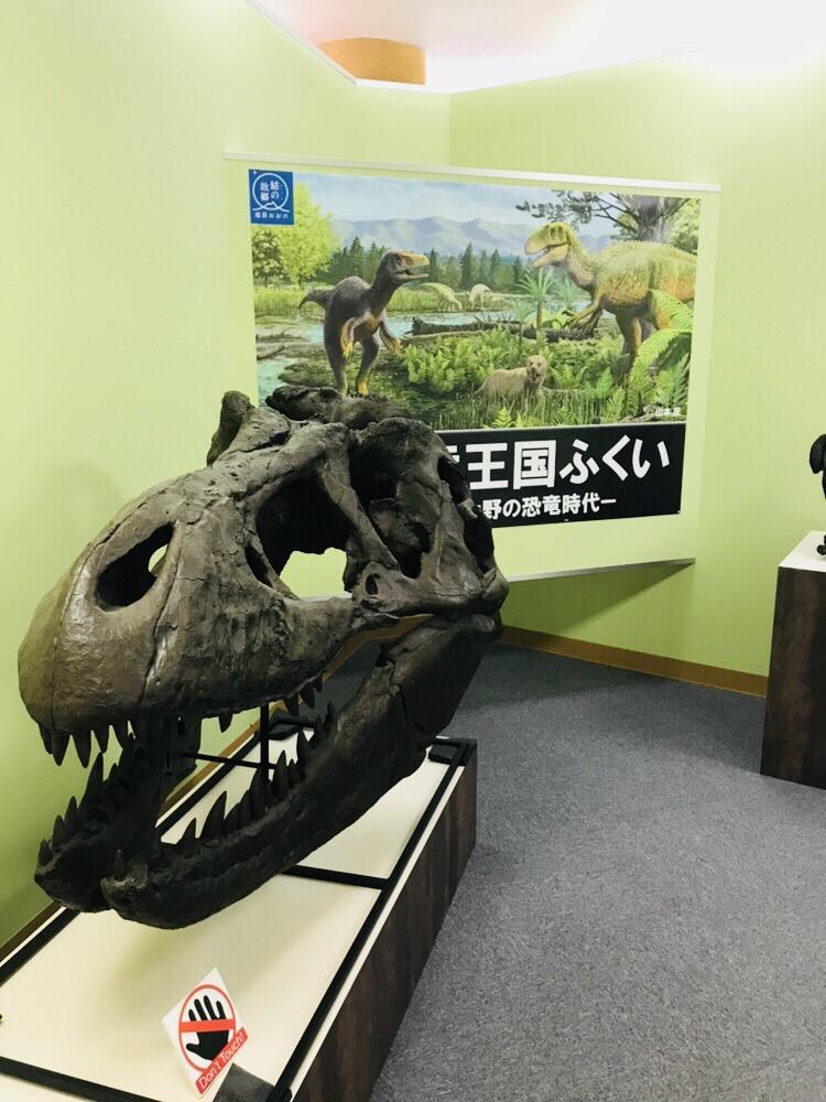 九頭竜(福井)恐竜博物館