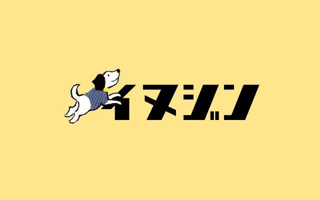 メイキーズグループコンテンツの海外ドッグウェア通販サイト「イヌジン」がリリース!